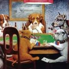 Why using an online casino is good for you and your dog