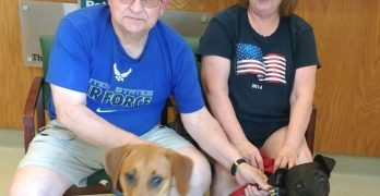 How A Vietnam Vet Changed The Life Of A Twice-Surrendered Shelter Dog