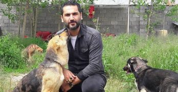 There Are Hardly Any Animal Shelters In His Country, So He Built One