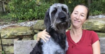 Delaware Veteran Searching Desperately For Missing Service Dog, Ozzy