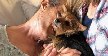 Dying Man Says Final Goodbye To Dog With Help From The Nurses