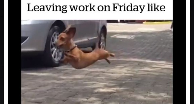 Leaving Work On Friday Like…!
