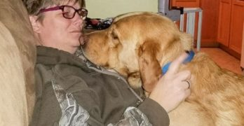 Bandit Was Rescued From Deplorable Conditions. Now He's Getting A Second Chance.