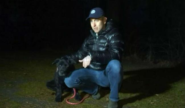 Sal's Saga: Missing Senior Dog Found After Days Stuck In Freezing Mud Pit