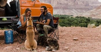 Couple Moves Into Van To Make Their Rescue Dogs Happy
