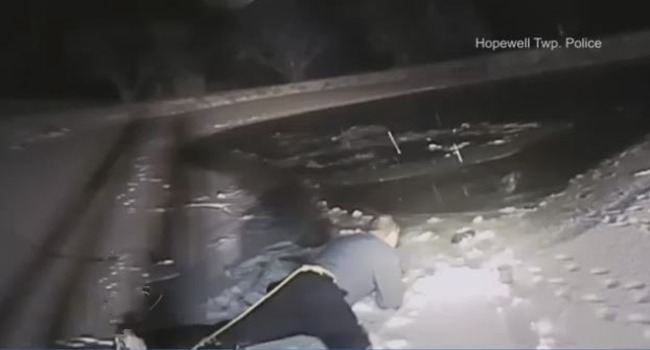 WATCH: Daring Dog Rescue As Pup Is Pulled From Icy Pond