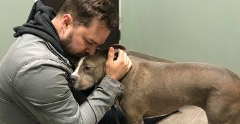 Oklahoma Veteran Reunited With Stolen Dog