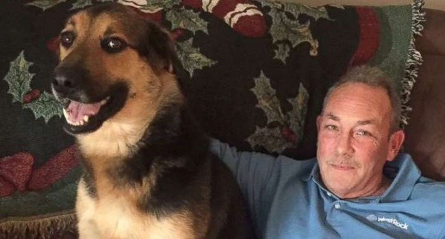 "Man Hilariously Babysits His ""Grand-Dog"" For The Holidays"