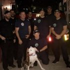 Jacksonville Firefighters Save Christmas By Finding Family's Lost Dog