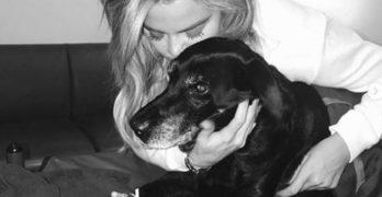 Khloe Kardashian Mourns The Loss of Her Black Lab, Gabbana