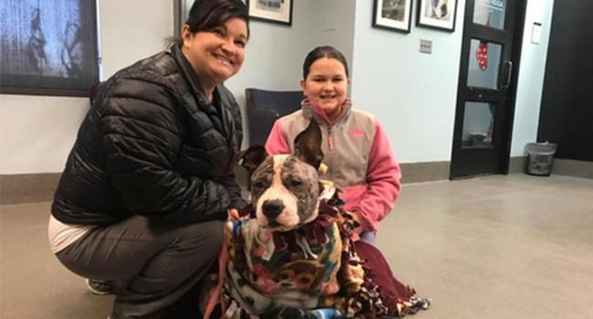 Freezing Dog Rescued, Finds Forever Home on New Year's Day