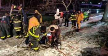Firefighters Rescue Man Trying To Rescue Dog From Icy River (They Got The Dog, Too!)