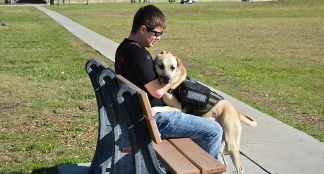 """Our Bond Goes Through The Leash."" Struggling Veteran & His Service Dog Are An Inseparable Team"