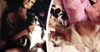 Pop Icon Christina Aguilera Posts Instagram Tribute To Her Beloved Papillon, Stinky