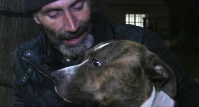 Andy's Bond With Bailey Helped Get Him Off Drugs And Saved His Life