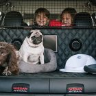 "Is the Nissan X-Trail 4Dogs The ""Pawfect"" Vehicle For Your Family's Adventures?"
