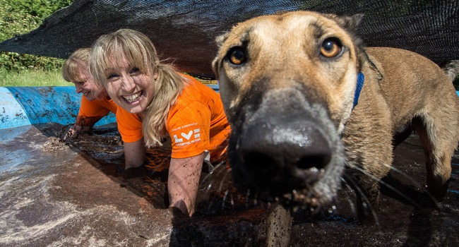 The Muddy Dog Challenge! Are You & Your Pooch Up To It?!