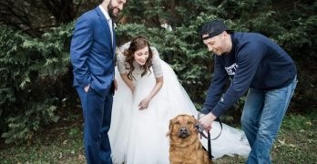 """""""I Dog!"""" Couple Folds Humane Society Event Into Their Wedding Weekend"""