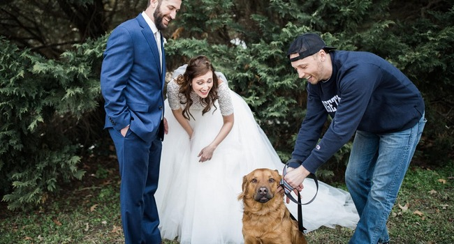 """I Dog!"" Couple Folds Humane Society Event Into Their Wedding Weekend"
