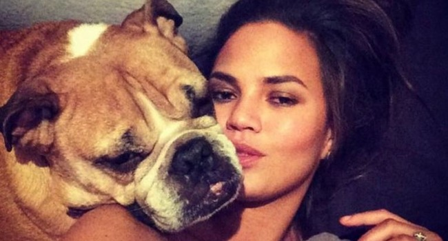 Chrissy Teigen Tearfully Mourns The Loss Of Beloved Bulldog, Puddy