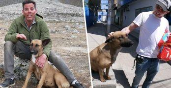 "Steve-O Of Jackass Fame ""Finds True Love"" When He Rescues A Peruvian Street Dog"