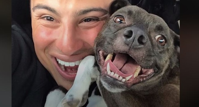 This Guy Has A Whole PACK of Pitties At Home … Now He's Saving Them All Over California!