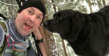 """Friendly Dog To Park Visitors: """"I Follow Hikers Sometimes."""""""
