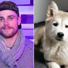 Olympian Gus Kenworthy pens touching tribute after the sudden death of his rescue dog, Beemo.