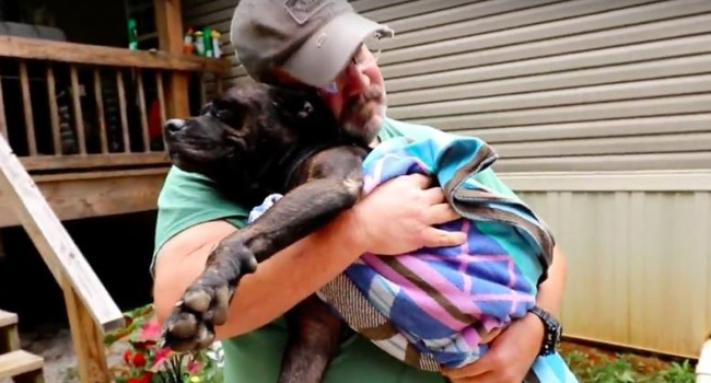 When an injured stray found her way to their porch, this family opened their hearts. Betsy stepped right in.