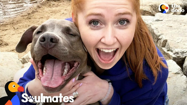 "Courtney fostered hundreds of animals without a ""failure,"" until she met the sick, little pit bull who changed her life."