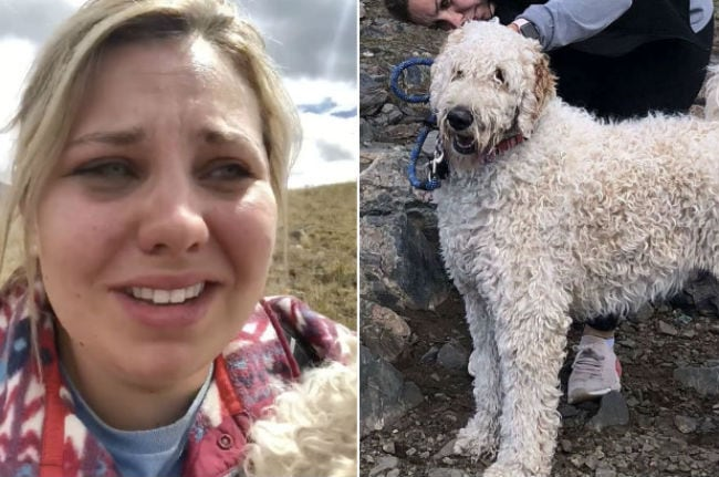 Kansas woman reunited with dog lost after the crash that killed her mom