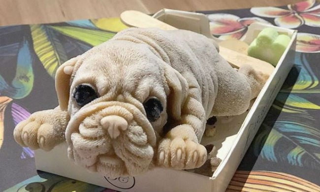 Dog-shaped ice cream treats from Taiwan are freaking people out!