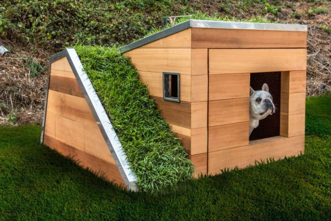 This sustainable dog house is design-forward, eco-friendly and has a hidden drawer for stashing treats