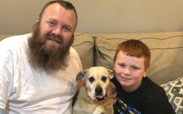 This senior canine helped a fight vet and his household overcome their grief