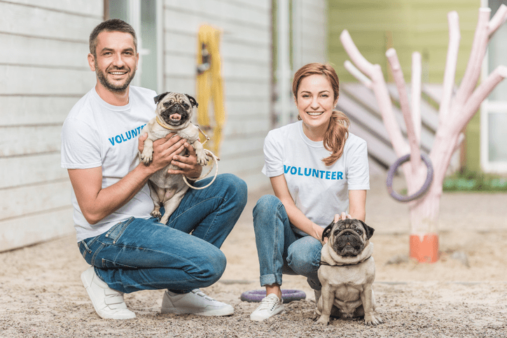 Dog Volunteers: Have You Considered It?